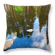 Forest Reflection Throw Pillow
