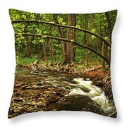 Forest River Throw Pillow