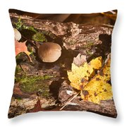 Forest Scene 6 Throw Pillow