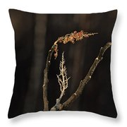 Forest Song Throw Pillow
