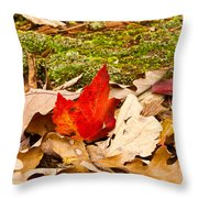 Forest Still Life 5 Throw Pillow