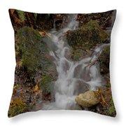 Forest Stream Cascade Throw Pillow