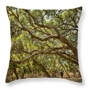 Forest Stroll - The Magical And Mysterious Trees Of The Los Osos Oak Reserve. Throw Pillow