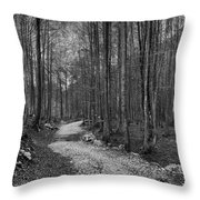 Forest Trail Bw Throw Pillow