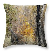 Forest Trees In Winter  Throw Pillow