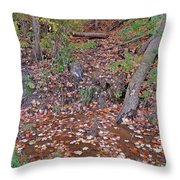 Forest Trickle Throw Pillow