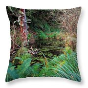 Forest Wetlands II Throw Pillow