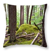 Forest With Moss-covered Rocks Along John's Lake Trail In Glacier Np-mt Throw Pillow