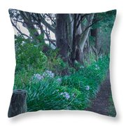 Forested Path Throw Pillow