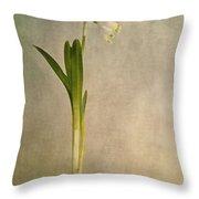 Foretaste Of Spring Throw Pillow by Priska Wettstein