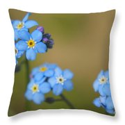 Forget Me Not 01 - S01r Throw Pillow