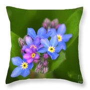 Forget-me-not Stylized Throw Pillow