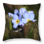 Forget Me Nots Springtime Throw Pillow