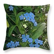 Forgetme Not Throw Pillow
