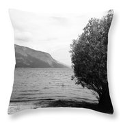 Forgive My Intension Throw Pillow
