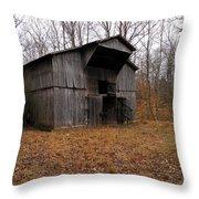 Forgotten Barn Throw Pillow