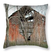 Forgotten By Time Throw Pillow