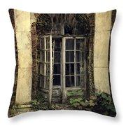 Forgotten Chamber Throw Pillow