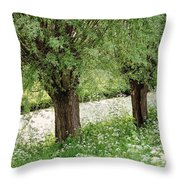 Forgotten Dreams. The Spring Has Arrived. Netherlands Throw Pillow