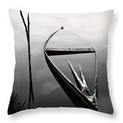 Forgotten In Time Throw Pillow