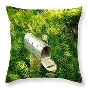 Forgotten Mail 0628 Throw Pillow