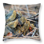 Forgotten Pine Cone Throw Pillow
