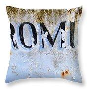 Forgotten Promise Throw Pillow