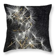 Forgotten Wishes Throw Pillow