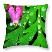 Formosa Bleeding Heart On Ferns Throw Pillow