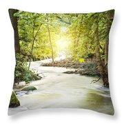Forrest Stream Throw Pillow