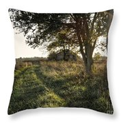 Forsaken Road Throw Pillow