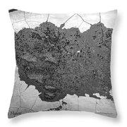 Fort Gratiot Light House Wall Texture Throw Pillow