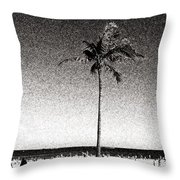Fort Lauderdale Palm Tree Throw Pillow