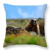 Fort Marmot Throw Pillow