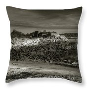 Fort Williams Throw Pillow