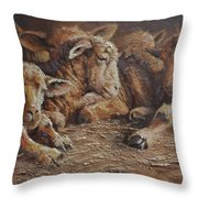 Forty Winks Throw Pillow