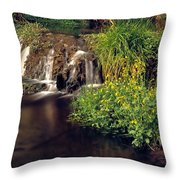 Fossil Creek Throw Pillow