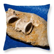 Fossil Fish Vertebrae In Rock Throw Pillow