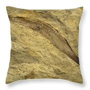 Fossil Leaves Throw Pillow
