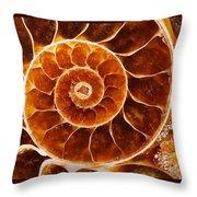 Fossil Nautilus Throw Pillow