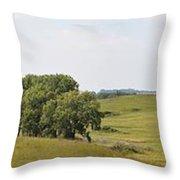 Fossil Prairie Panoramic 3 Throw Pillow