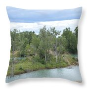 Fossil Prairie Panoramic Throw Pillow