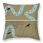 Fossil Preservation On A River Plain Throw Pillow