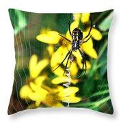 Found On The Web Throw Pillow