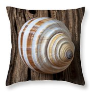 Found Sea Shell Throw Pillow by Garry Gay