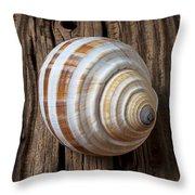 Found Sea Shell Throw Pillow