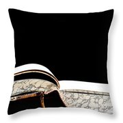 Fount Of Knowledge Throw Pillow