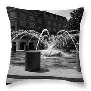 Fountain In Charleston Throw Pillow