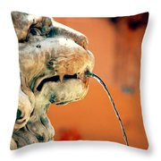 Fountain Lion Throw Pillow
