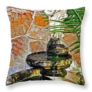 Fountain Of Friendship Throw Pillow